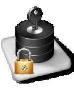 Data-Level-Security-using-Virtual